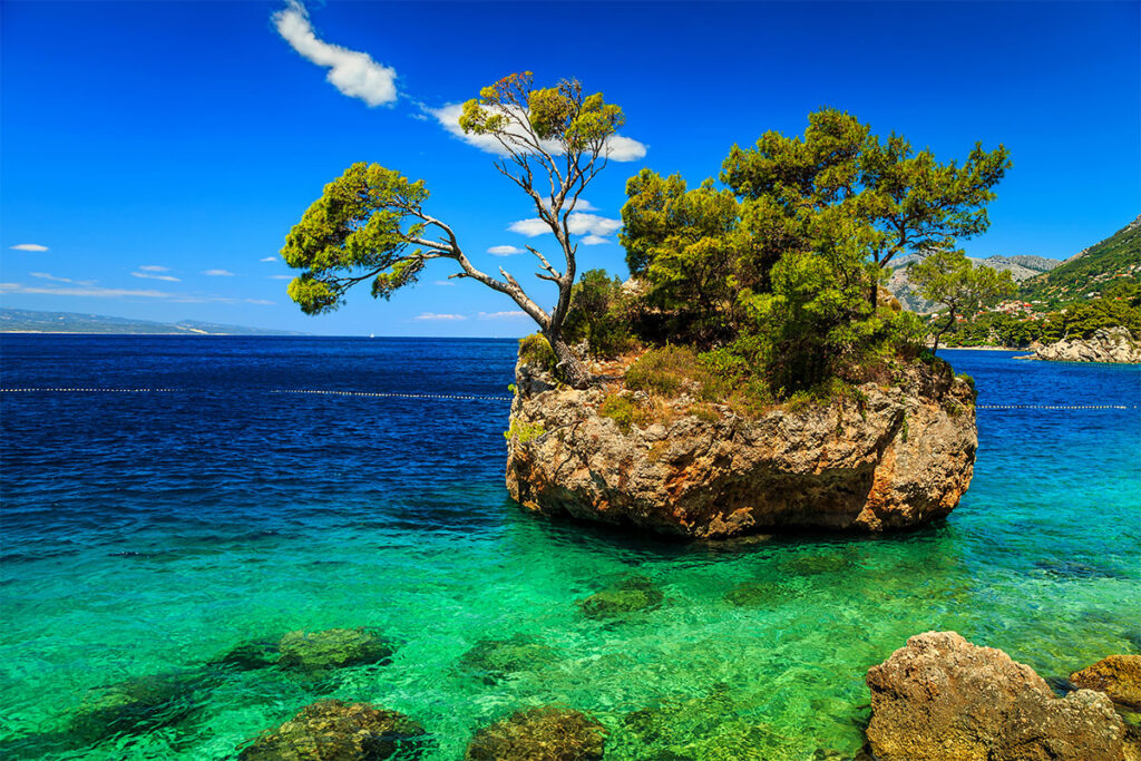 A huge rock with three pine trees on it in the shallow part of the sea.